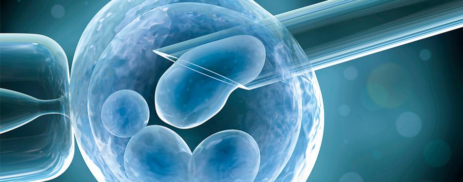 Tại sao một số trung tâm ở nước ngoài quảng cáo tỉ lệ có thai quá cao khi làm IVF?
